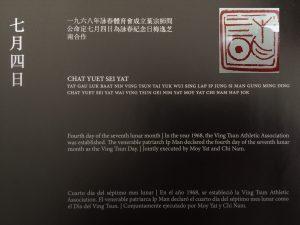 Día Internacional del Ving Tsun